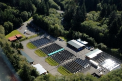 Quinault Fisheries Department