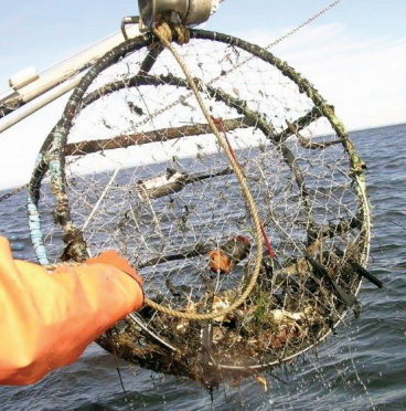Crab Pot Monitoring