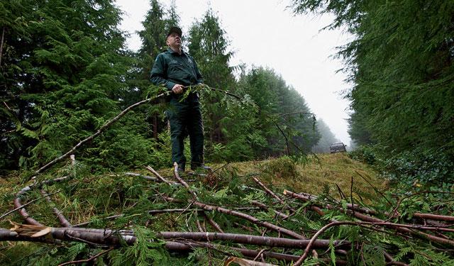 Moss Poachers2