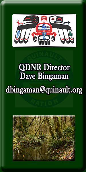 Quinault Division of Natural Resources Director Dave Bingaman