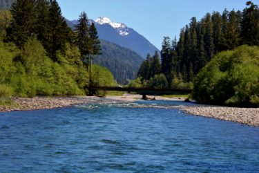 EPA Lawsuit | Quinault Indian Nation